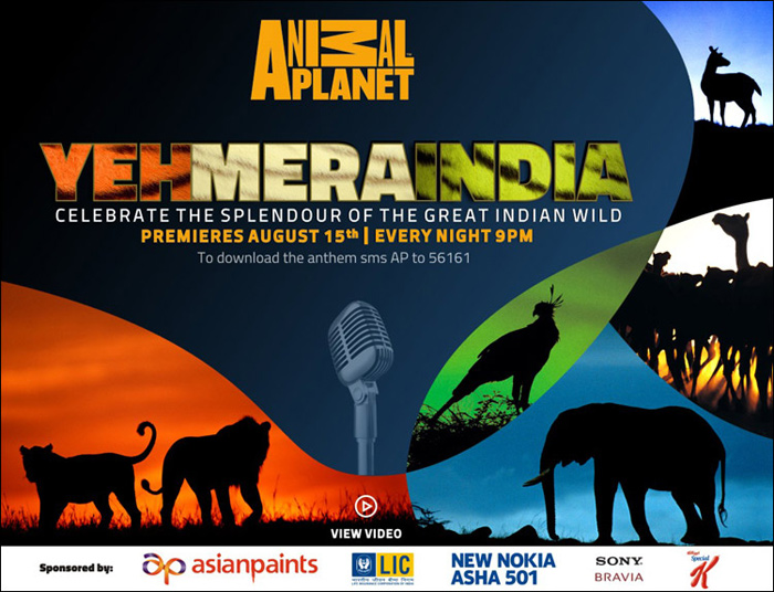 Yeh mera india animal planet mp4 video song download.