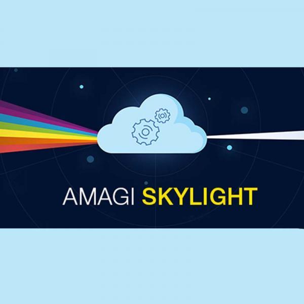 public://images/news_releases-images/2017/11/14/AMAGI network 800x800.jpg