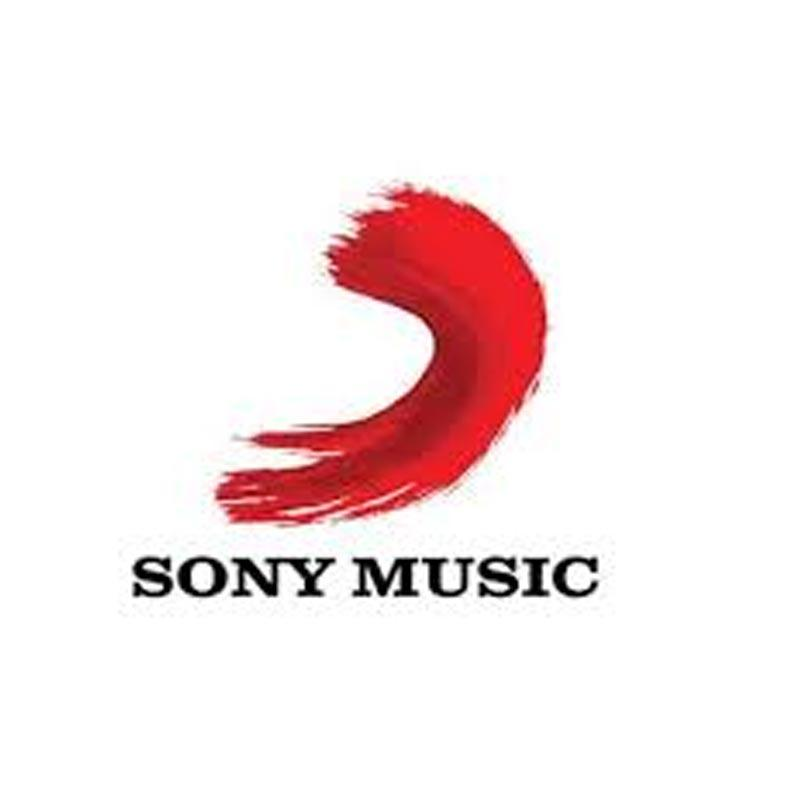 Sony Music teams up with TikTok to launch their smash hit