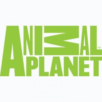 https://www.indiantelevision.com/sites/default/files/styles/340x340/public/images/tv-images/2014/03/20/animal_planet.jpg?itok=mq90UXoS