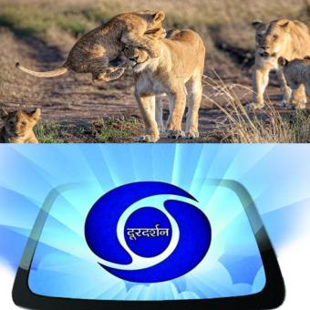 http://www.indiantelevision.com/sites/default/files/styles/340x340/public/images/tv-images/2017/10/20/natgeo-dd.jpg?itok=vBZsBtmL