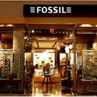 https://www.indiantelevision.com/sites/default/files/styles/340x340/public/images/tv-images/2018/02/22/Fossil.jpg?itok=ONt4L8Fm
