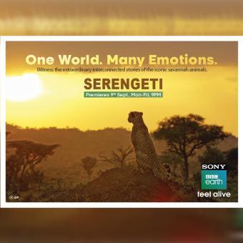 https://www.indiantelevision.com/sites/default/files/styles/340x340/public/images/tv-images/2019/09/09/bbc_0.jpg?itok=BToXNAL9