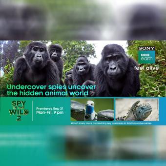 https://www.indiantelevision.com/sites/default/files/styles/340x340/public/images/tv-images/2020/09/23/bbc_0.jpg?itok=TwV443mF