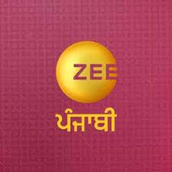 https://www.indiantelevision.com/sites/default/files/styles/340x340/public/images/tv-images/2020/11/04/zee.jpg?itok=CTrMK6VQ