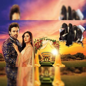 https://us.indiantelevision.com/sites/default/files/styles/340x340/public/images/tv-images/2020/11/21/brahmarakshas.jpg?itok=AwSUhlAh