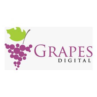 https://www.indiantelevision.com/sites/default/files/styles/340x340/public/images/tv-images/2020/11/24/grapes.jpg?itok=cgG1ftSC
