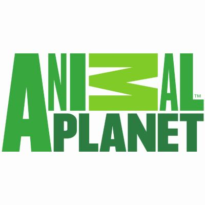 http://www.indiantelevision.com/sites/default/files/styles/smartcrop_800x800/public/images/tv-images/2016/05/11/Animal%20Planet.jpg?itok=ZmzbSkV8