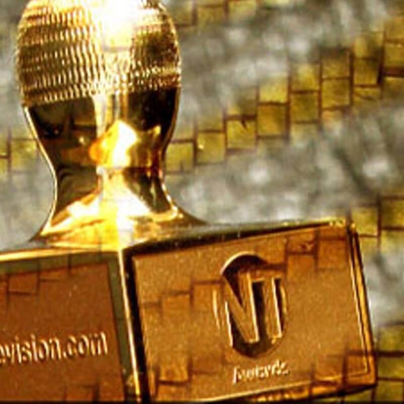 https://www.indiantelevision.com/sites/default/files/styles/smartcrop_800x800/public/images/tv-images/2017/01/30/nt-awards.jpg?itok=oocsp0hs