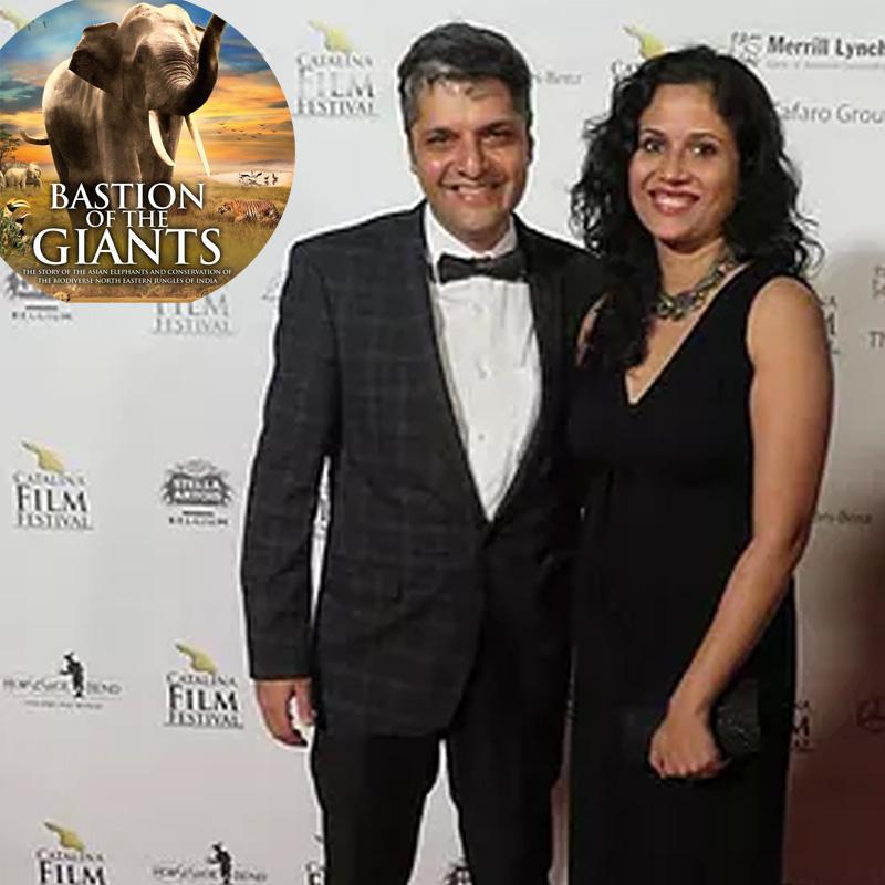 https://www.indiantelevision.com/sites/default/files/styles/smartcrop_800x800/public/images/tv-images/2017/09/23/wildlife_film_1.jpg?itok=fIvwZCbX
