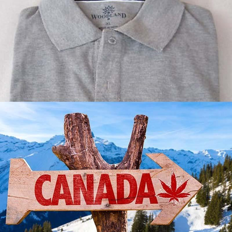 http://www.indiantelevision.com/sites/default/files/styles/smartcrop_800x800/public/images/tv-images/2017/10/05/Woodland-Canada_Tourism.jpg?itok=fJAcKJXM