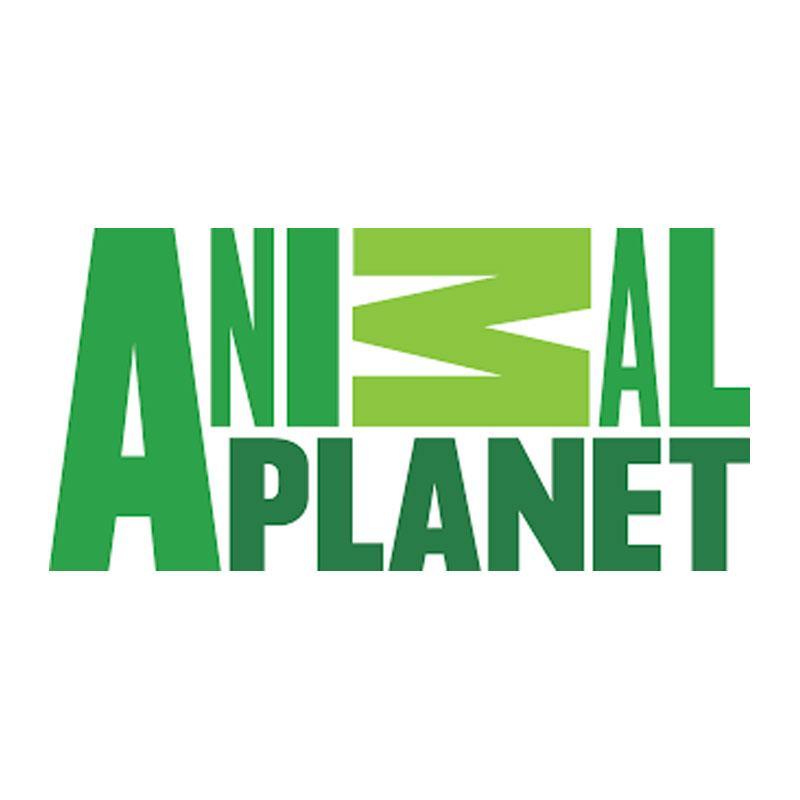 http://www.indiantelevision.com/sites/default/files/styles/smartcrop_800x800/public/images/tv-images/2018/06/11/animal.jpg?itok=Snan7zC4