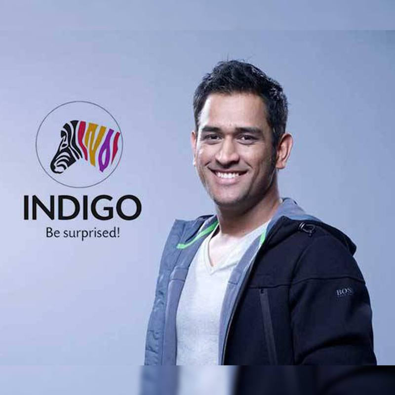 graphic Indigo paints signs MS Dhoni as ambassador images