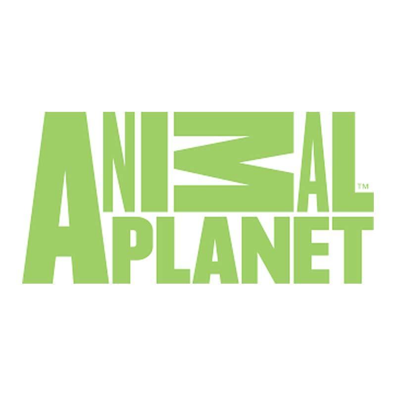 https://www.indiantelevision.com/sites/default/files/styles/smartcrop_800x800/public/images/tv-images/2018/11/14/animal-planet.jpg?itok=y1sO0BD9