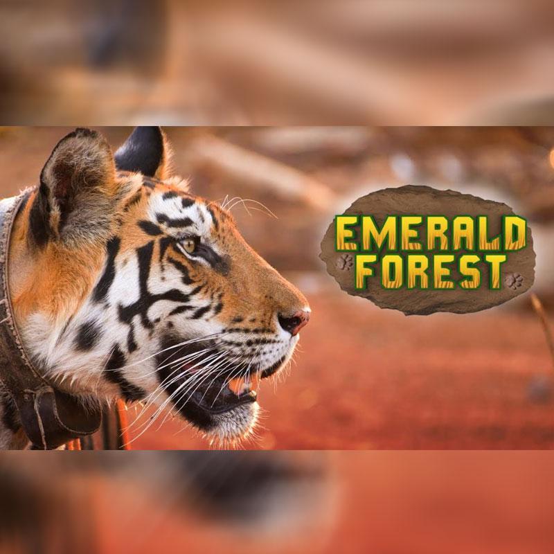 https://www.indiantelevision.com/sites/default/files/styles/smartcrop_800x800/public/images/tv-images/2020/03/18/epic.jpg?itok=mhKiG_nL