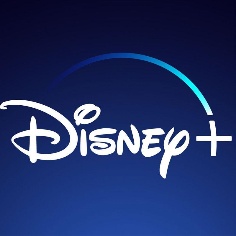 Disney+ Hotstar launch put on hold